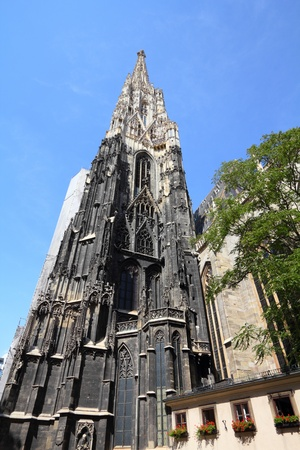saint stephen cathedral: Vienna, Austria - famous Stephansdom (Saint Stephens Cathedral).