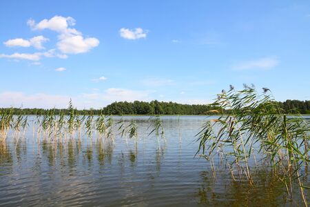 Masuria (Mazury) - famous lake district in Poland. Summer landscape in Europe. Wydminskie lake. Stock Photo - 14024844