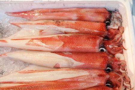 Red squids at famous Tsukiji Fish Market in Tokyo, Japan. Fresh seafood. photo