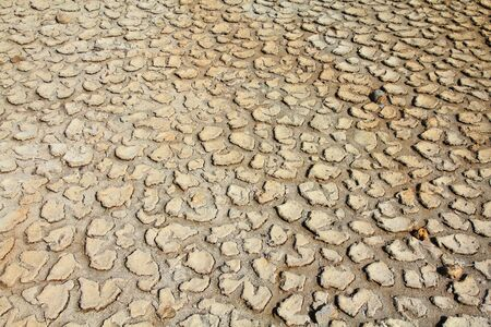 Greenhouse effect and global warming - dry cracked land in Africa photo