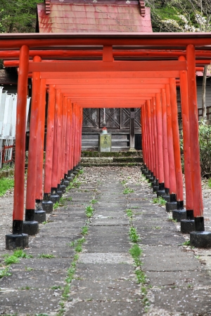 gifu: Takayama, Japan - town in Gifu prefeture of the region Chubu. Torii gates at a Shinto shrine.