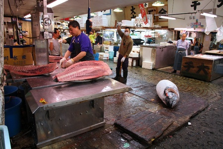 TOKYO - MAY 11: Vendors sell gigantic tuna fish at Tsukiji Fish Market on May 11, 2012 in Tokyo. It is the biggest wholesale fish and seafood market in the world.