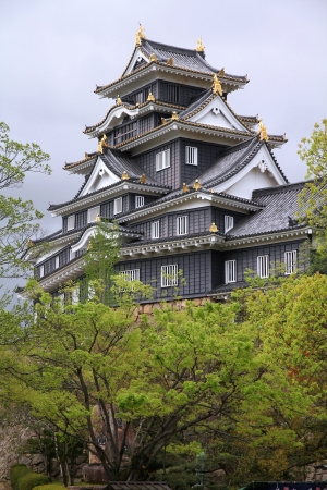 honshu: Okayama, Japan - city in the region of Chugoku (Honshu island). Okayama-jo castle.