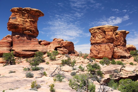 Canyonlands National Park in Utah, USA. Needles district. photo