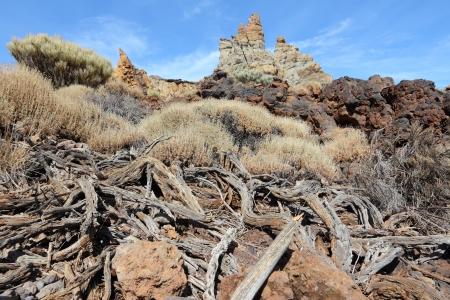 garcia: Tenerife, Canary Islands, Spain. Roques de Garcia - rock formations in volcano Teide National Park. Mount Teide.