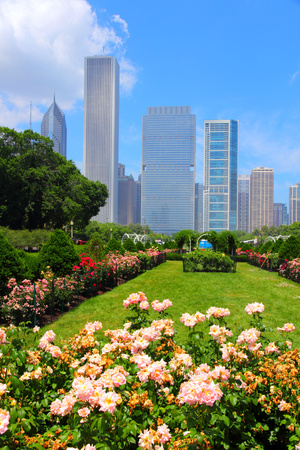 Chicago, Illinois in the United States. City skyline with Grant Park flowers. photo