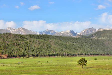 rocky mountain national park: Rocky Mountain National Park in Colorado, USA. Valle verde. Archivio Fotografico