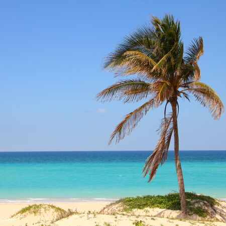 Cuba - Caribbean beach Playa Megano in Playas del Este part of Havana Province. Sandy coast. Square composition. photo