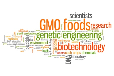 genetically modified: Alimenti geneticamente modificati (cibi OGM) concetti word cloud illustrazione. Word collage concetto. Archivio Fotografico
