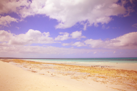 cross processed: Cuba - famous Cayo Coco beach, seaside resort in the Caribbean. Cross processed color tone - retro style filtered image. Stock Photo