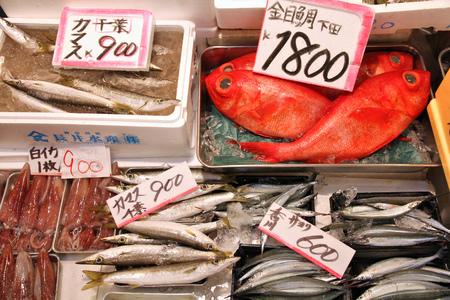 Seafood choice at famous Tsukiji Fish Market in Tokyo, Japan. Barracuda (kinmedai), splendid alfonsino, swordtip squid (shiroika), sayori (needlefish) and swordtip squid. photo