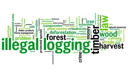 Illegal logging environmental issues and concepts word cloud illustration. Word collage concept.