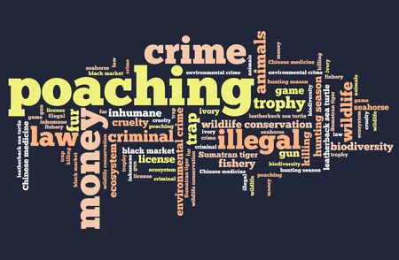 poaching: Poaching - environmental issues and concepts word cloud illustration. Word collage concept.