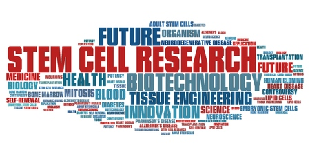 Stem cell research social issues and concepts word cloud illustration. Word collage concept. illustration