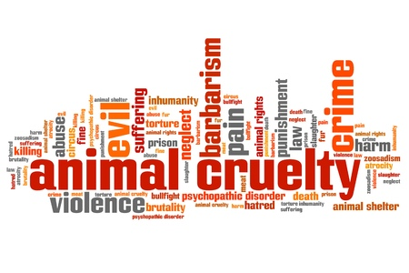 animal cruelty: Animal cruelty issues and concepts word cloud illustration. Word collage concept.