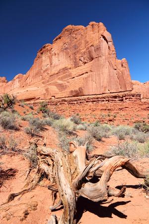 ut: Arches National Park in Utah, USA. Famous Park Avenue trail.