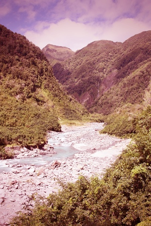 temperate: New Zealand, West Coast. Mountain creek and lush temperate rainforest. Cross processed color tone - retro filtered style.