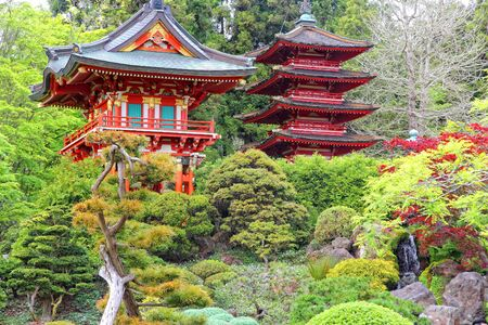 and gate: San Francisco, California, United States - Japanese Tea Garden in Golden Gate Park.