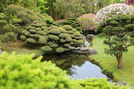 japanese tea garden: San Francisco, California, United States - Japanese Tea Garden in Golden Gate Park.