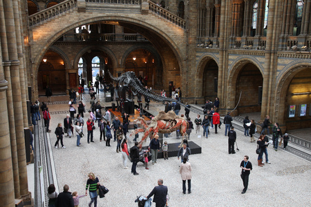 museum visit: LONDON, UK - MAY 14, 2012: People visit Natural History Museum in London. With more than 4.1 million annual visitors it is the 4th most visited museum in the UK. Editorial