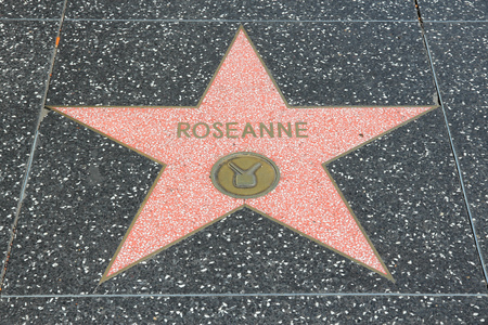 hollywood boulevard: LOS ANGELES, USA - APRIL 5, 2014: Roseanne star at famous Walk of Fame in Hollywood. Hollywood Walk of Fame features more than 2,500 stars with inscribed celebrity names.