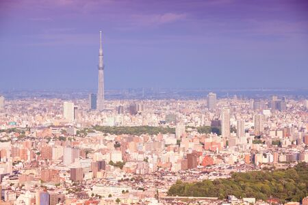 Tokyo, Japan - aerial view towards Asakusa district. Retro tone color effect - filtered colors style. photo