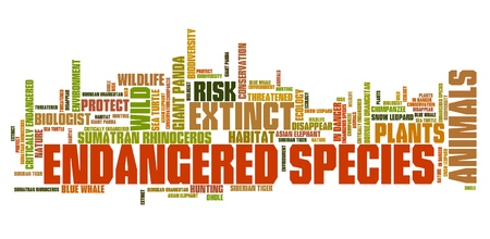 Endangered species - environment issues and concepts word cloud illustration. Word collage concept. Banco de Imagens