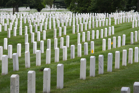 Arlington National Cemetery, Virginia, United States. US military cemetery. 版權商用圖片