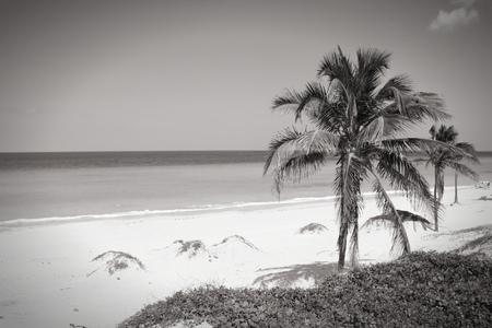 Cuba - Caribbean beach Playa Megano in Playas del Este part of Havana Province. Sandy coast. Black and white tone - retro monochrome style. photo