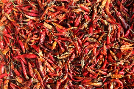 grocers: Drying red chili peppers in the sun in Bangkok, Thailand. Thai cuisine concept. Stock Photo