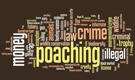 environmental issues: Poaching - environmental issues and concepts word cloud illustration. Word collage concept.