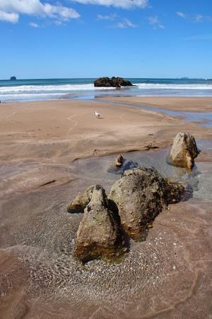 north island: North Island, New Zealand - Hot Water Beach.