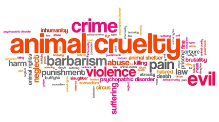 animal abuse: Animal cruelty issues and concepts word cloud illustration. Word collage concept.