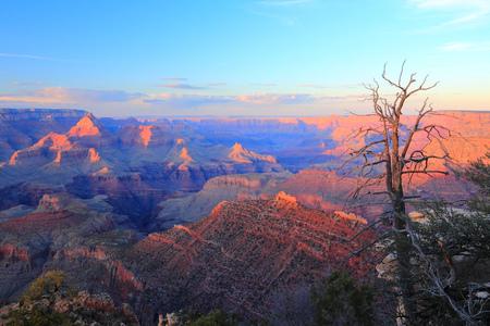 Grand Canyon sunset. Landscape in Arizona, United States. photo