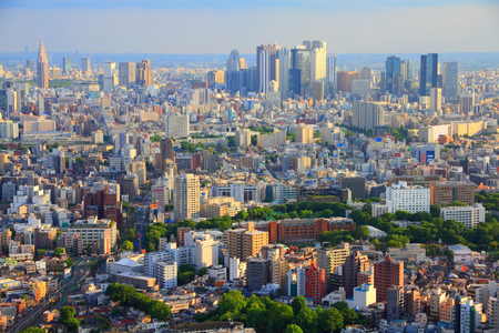 urban sprawl: Tokyo skyline - urban sprawl cityscape with Toshima and Shinjuku wards. Warm sunset light. Stock Photo