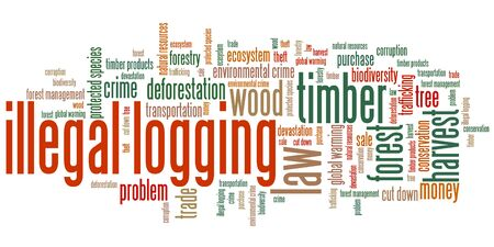 environmental issues: Illegal logging environmental issues and concepts word cloud illustration. Word collage concept.