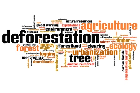 depletion: Deforestation issues and concepts word cloud illustration. Word collage concept. Stock Photo