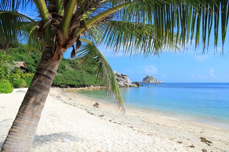 koh tao: Thailand, Southeast Asia - beach at Koh Tao island in Surat Thani province.