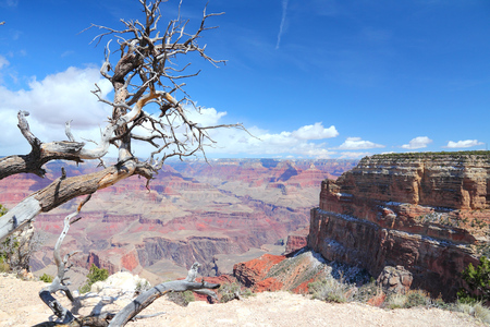 mohave: Grand Canyon National Park in Arizona, United States. Colorado River visible. Mohave Point view. Stock Photo