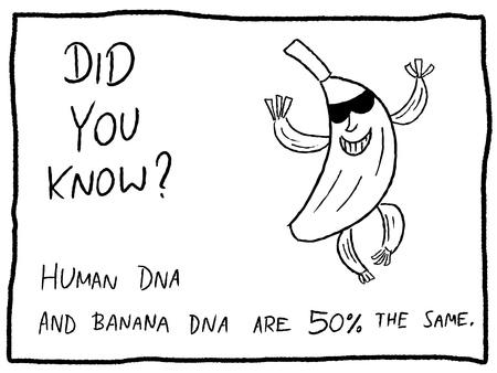 재미있는 사실 퀴즈 - 웹 코믹이나 신문의 재미 부분에 사용 가능한 유용한 낙서 만화 그림.