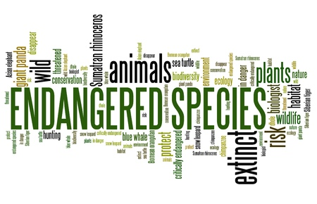 endangered species: Endangered species - environment issues and concepts word cloud illustration. Word collage concept. Stock Photo
