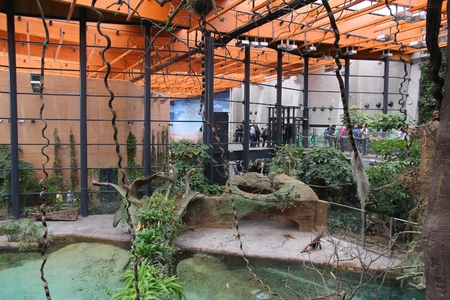 animal species: WROCLAW, POLAND - JANUARY 31, 2015: People visit Afrykarium in Wroclaw Zoo. Afrykarium is a newly built (2014) African pavilion with some 100 animal species.