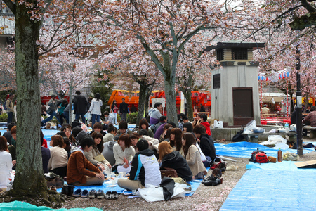 transitional: KYOTO, JAPAN - APRIL 14, 2012: People enjoy cherry blossom in Kyoto, Japan. Hanami is a traditional Japanese custom of enjoying the transitional beauty of flowers. Editorial
