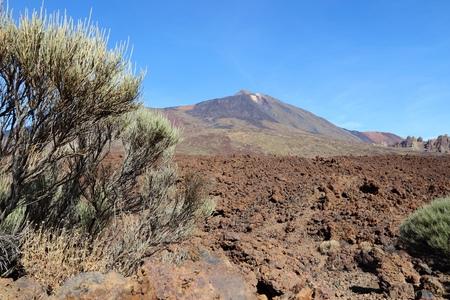 lava field: Pico del Teide - volcano in Tenerife. Natural landmark and lava field.