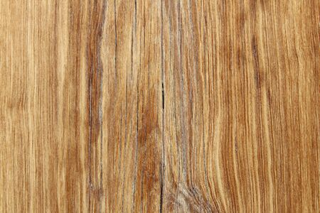 hardwood: Old wood background - hardwood backdrop. Vintage texture.