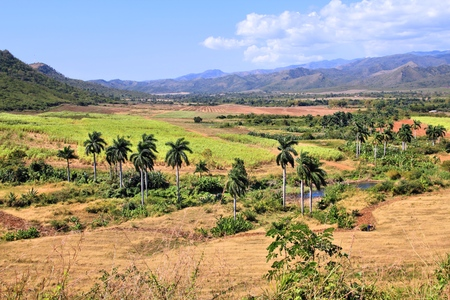 mill valley: Sugar Mill Valley in Trinidad, Cuba.