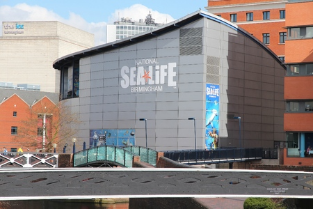 sea life centre: BIRMINGHAM, UK - APRIL 19, 2013: National Sea Life Centre in Birmingham, UK. It opened in 1996 and has seahorses, sharks, sting rays and otters. Editorial