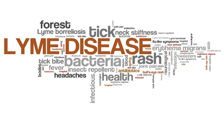 borreliosis: Lyme disease - tick borne infectious sickness. Health problems word cloud.