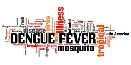 dengue: Dengue fever - tropical virus disease. Travel health word cloud. Stock Photo
