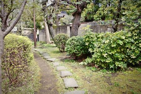 sumida: Tokyo, Japan - mysterious path at famous Sumida park.